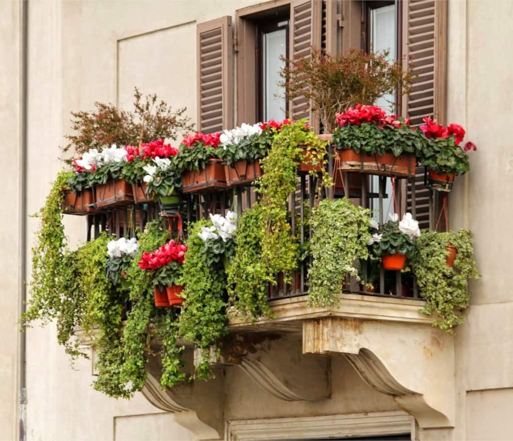green-balcony-winter.jpg